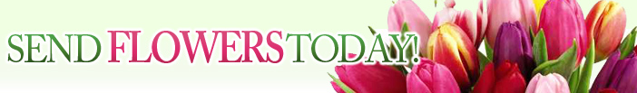 mountainviewflorist.com